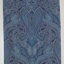 Terriart Royal Aqua Paisley Print Sheer Long Scarf-Vintage Photo