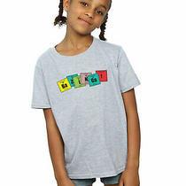 The Big Bang Theory Girls Bazinga Elements T-Shirt Sport Grey 9-11 Years Photo