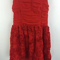 The Garden Collection h&m Women's Red Strapless Dress Size 12 Photo