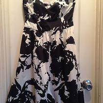 The Limited Black and White Strapless Dress Photo