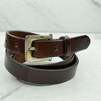 The Limited Brown Vintage Thick Genuine Italian Leather Belt Size Large 32 Photo