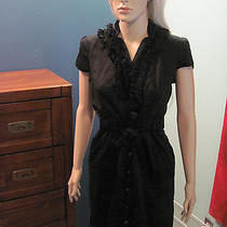 The Limited Button Up Ruffle Dress - Size M Photo