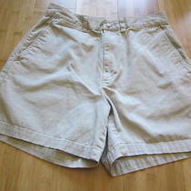 The Limited Chinos Shorts Size 8 Reduced Price Photo