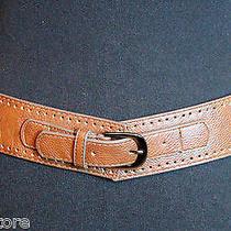 The Limited Cut Out Brown Tan Genuine Leather Elastic Back Boho Belt Sz M/l (90d Photo