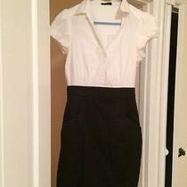 The Limited Dress Size 8 Photo