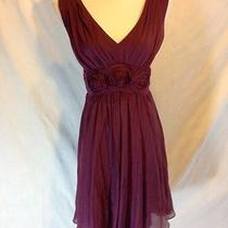 The Limited Event  S  Sleeveless Flouncy Homecoming/cocktail  Dress Nwt Wine Photo