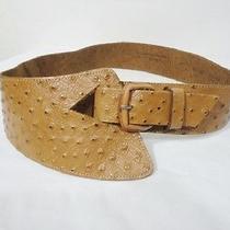 The Limited Express Boho Hippie Chic Versatile Cow Hide Leather Sz Medium Belt Photo