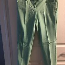 The Limited Ideal Stretch Ankle Dress Pants Size 8 Nwt Photo