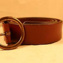 The  Limited ---Italian Leather Brown -Belt --Small Photo