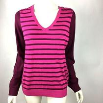 The Limited Magenta Striped Sweater v Neck Long Sleeve Thin Women Large Nwt 50 Photo