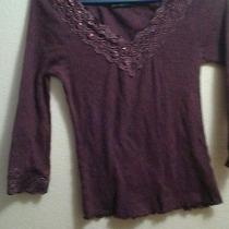 The Limited Purple Shirt Photo