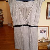 The Limited Size Large Silver Top Photo