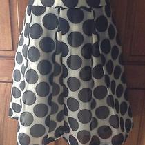 The Limited Skirt sz.s Big Polka Dot Black White Print Check  My Other Listings Photo