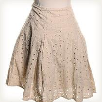 The Limited Solid Tan Skirt Sz 2 a-Line Photo