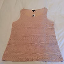 The Limited Top Large Nwt Photo