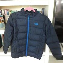 The North Face Boy Jacket Size L (14-16) Photo