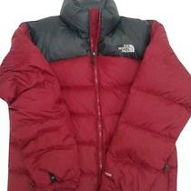 The North Face Men's Biking Red Nuptse 2 Jacket - Size Variation Photo