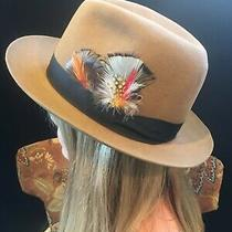 The Safari Collection Stetson Hat Cougar Felt Photo