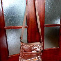 The Sak Metallic Crossbody Purse Photo