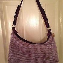 The Sak Purple Handbag Photo