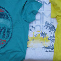 The Webster Miami  Target Tropical  T Shirt Men/women- Boyfriend Look New/shelf Photo