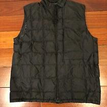 Theory Black Quilted Vest Large Photo