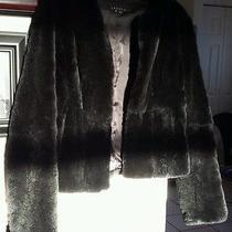 Theory Cherub Black Rabbit Fur Jacket Photo