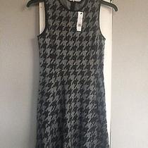 Theory Dress Size 6 Brand New  ( Nikay )  Photo
