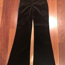 Theory Nwt Brown Velvet Bell Bottom Pants Size 4 Photo