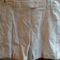 Theory Off White/tan Striped Shorts-8 Photo