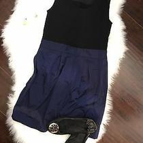 Theory Sheath Black and Blue Dress Photo