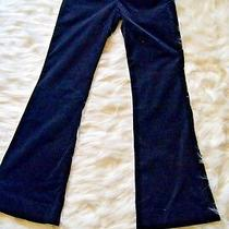 Theory Women's Pants Style 80774265 Angora Cotton Blend Size 0 Usa Made Photo