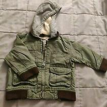 Thick Green and Gray Jacket Baby Gap 12-18 Months Photo