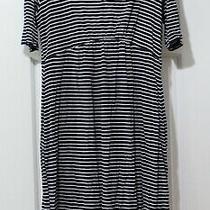 Tiffany Rose Maternity Blue Striped Short Sleeve Dress Size 4 (Us10-12) Photo