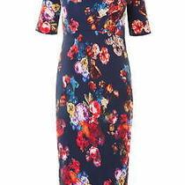 Tiffany Rose Women's Shift Dress Blue Size 5 Anna Maternity Floral 155- 374 Photo