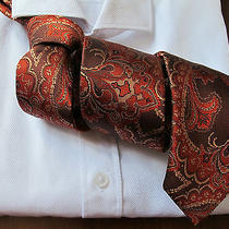 Tiger of Sweden Handmade Paisley 100% Silk Tie Slim Acne Rrp 110 Photo