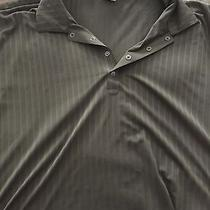 Tiger Woods Polo- 3xl Photo