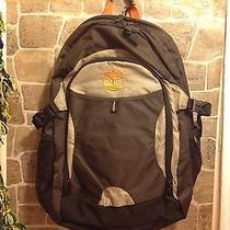 Timberland Brown and  Beige Backpack  With Laptop Compartment New Photo