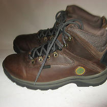 Timberland  Brown  Water Proof Trail Mid  Boot - Men's Sz 10.5 Photo