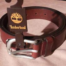 Timberland /leather Belt / Photo