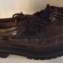 Timberland Leather Brown Men's Casual Shoe and Low-Cut Boot Size 12 Photo
