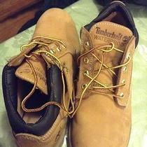 Timberland Low Top Wheat Boots Size 8 Photo