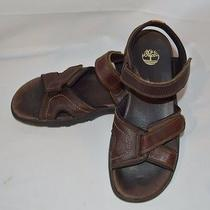 Timberland Men's Size 9m Sherrington Leather Strap Sandal 38526 Photo