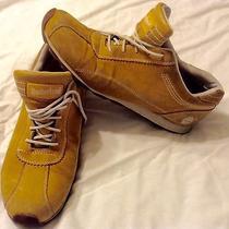 Timberland Shoe Size 8 Photo