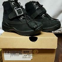 Timberland Toddler Winter Boots Photo