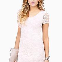 Tobi Blush Lace Dress Photo