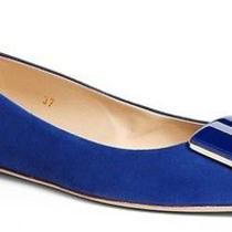 Tod's Embellished Pointy Toe Blue Suede Skimmer Flat Size 39.5 Tods Ballet 545 Photo