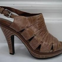 Tods Light Brown Genuine Lizard Platform Heels Sandals Italian Size 37 Photo