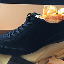 Tod's Sneakers Photo