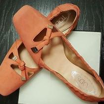 Tod's Sz 40.5 - 10.5 Auth Womens Suede Leather Ballerina Flats Shoes. Excellent  Photo